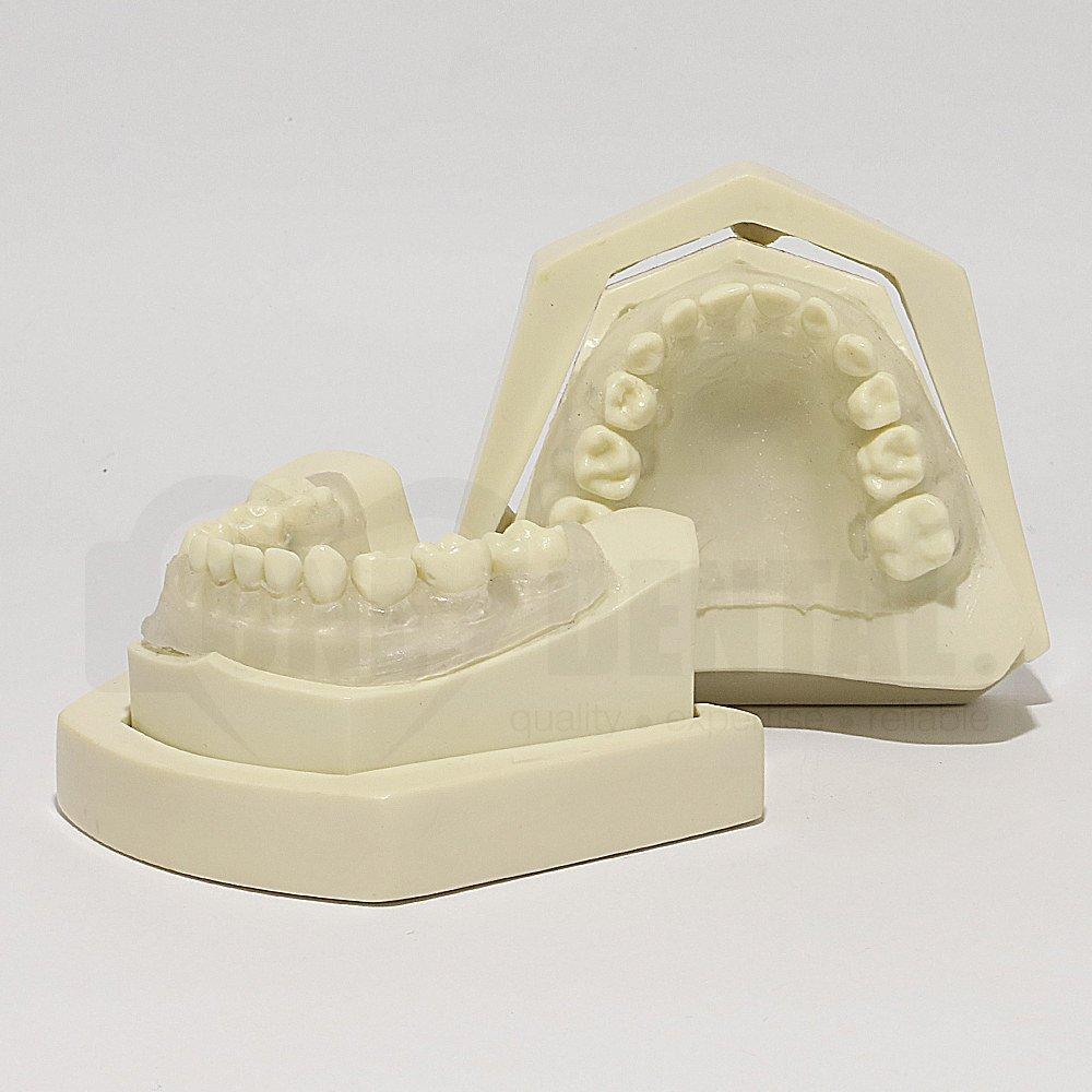 Paediatric Clear Gingivae Extraction Model MQD with Bone