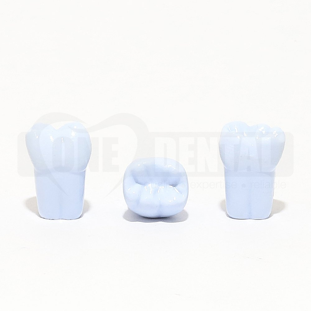 Tooth 46 Blue for 1974 Paedo Model