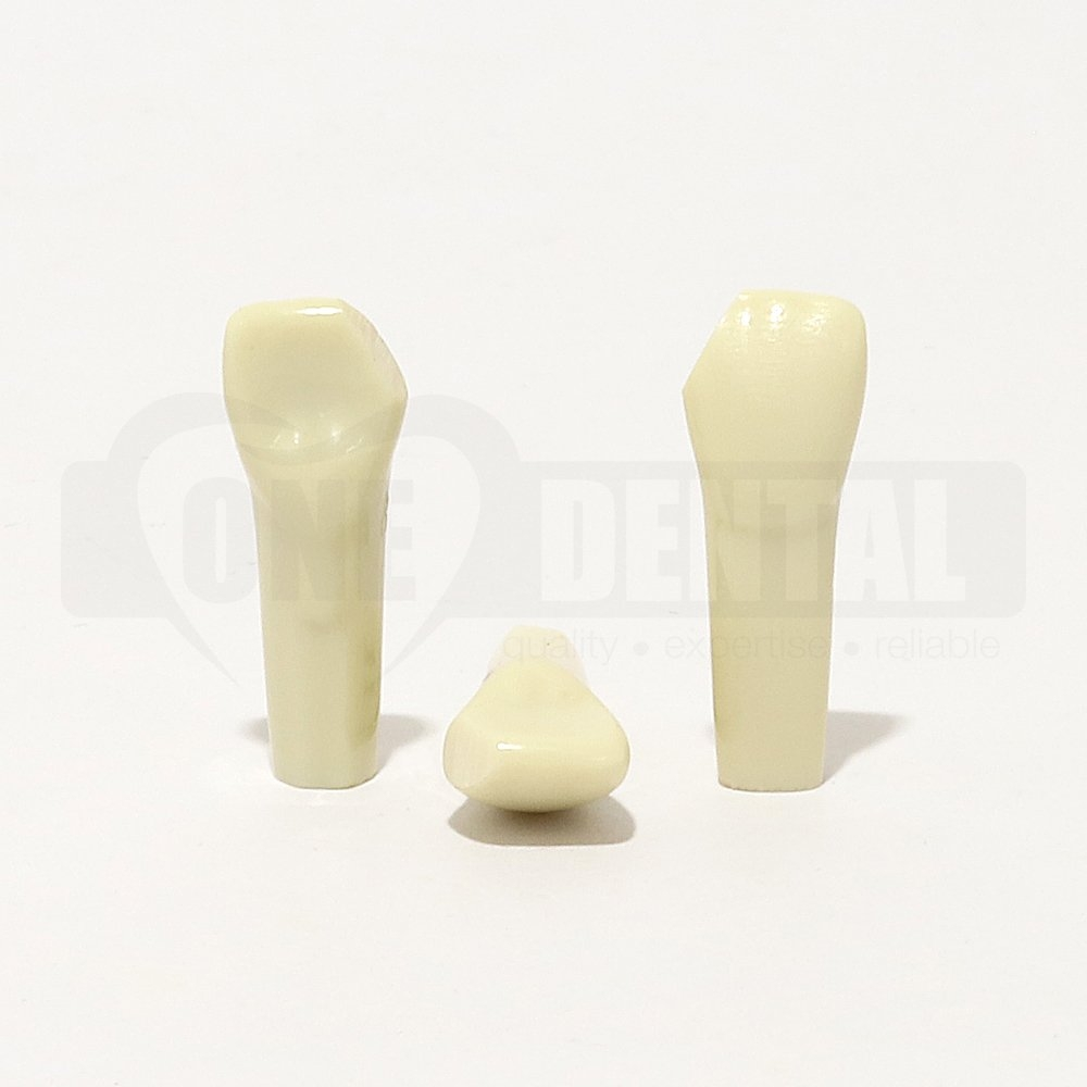 Prep Tooth 11 M FRAC Small JS for 2010 Adult Model