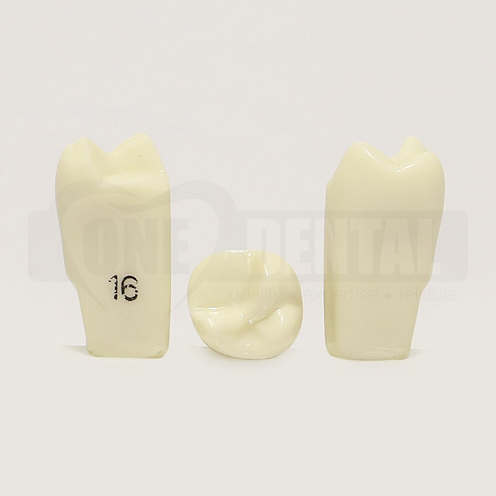 Prep Tooth 16MOB RE